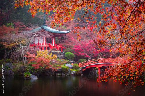 Papiers peints Kyoto Daigo-ji temple in autumn