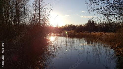 Foto op Plexiglas Chocoladebruin landscape