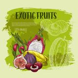 Exotic tropical fruit sketch grunge poster design