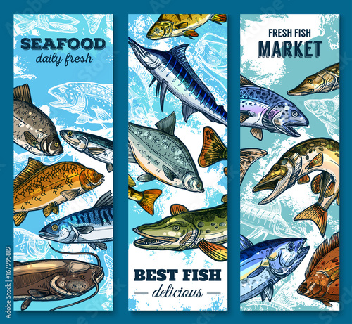 Fresh seafood and fish market sketch banner set buy for River fish market