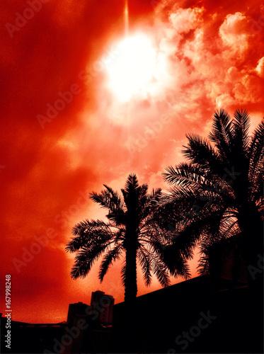 Fotobehang Rood traf. sunset