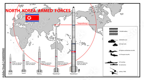 Deurstickers Art Studio Infographics of North Korea armed force