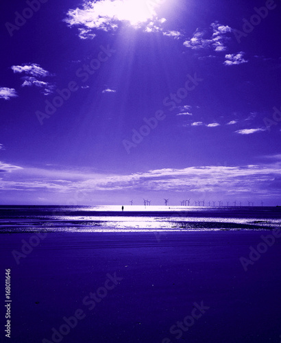 Foto op Canvas Violet water