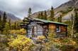 Trapper Cabin #2