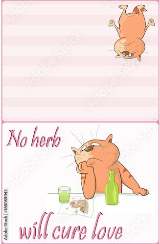 Illustration of a Cute Cat. Postcard. Cute Cat Sailor. Proverb