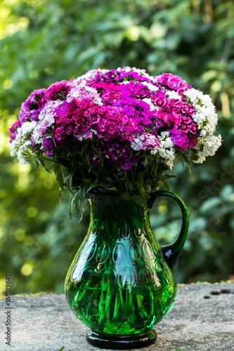 Bartnelken lila rosa Blütentraum. Dianthus barbatus. In einer großen grünen Vase