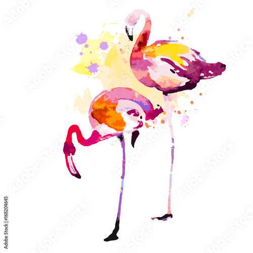 Beautiful watercolor flamingos, isolaned on a white. Big set. Poster