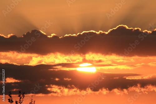 Foto op Canvas UFO Golden dawn
