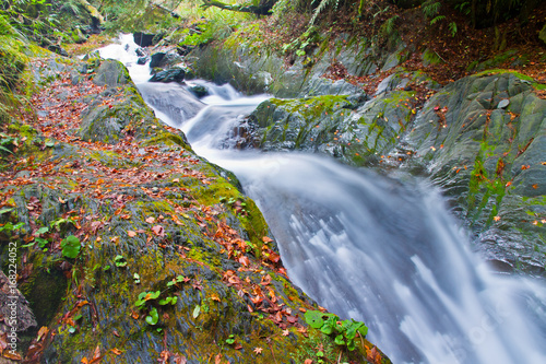 Beautiful autumn scenery in Taiwan, Asia. The fallen leaves make the stream a Beautiful and colorful picture, at Taroko National Park, Taiwan,Asia. - 168224052