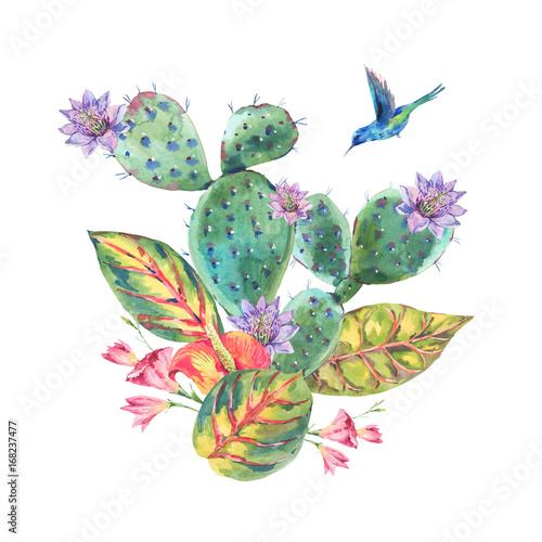 Watercolor Cactus, tropical flowers, hummingbird - 168237477