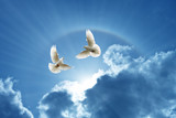 Doves in the air symbol of faith over shiny background - 168261272