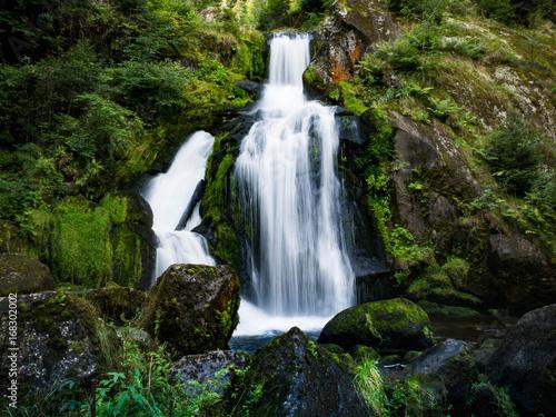 Wasserfall im Wald - 168302002