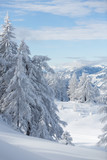 Winterlandscape in the Austrian Alps