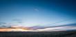 Sunset with bison in Grasslands National Park