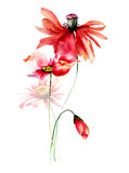 Template for card with Poppies and Gerbera flowers