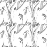 Monochrome seamless pattern with floral background with Poppy and Tulip flowers