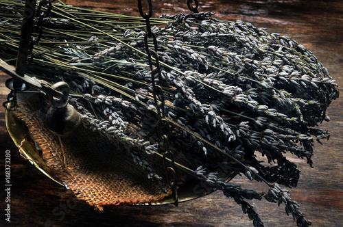 Papiers peints Lavande Lavandula Lavender Alhucema Levandule جنس Lofnarblóm Lawenda Lavanda ضرم Lavande Gattung Cantueso Lavendel Лаванда 薰衣草 Lavendelsläktet