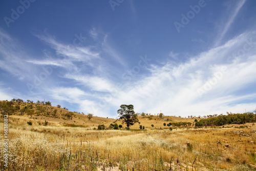 Poster Hills of Lake Jindabyne