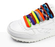 Laces multicolored bright in white sneakers