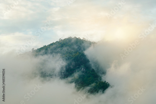 Mountain and mist / View of mountain and mist. - 168394036