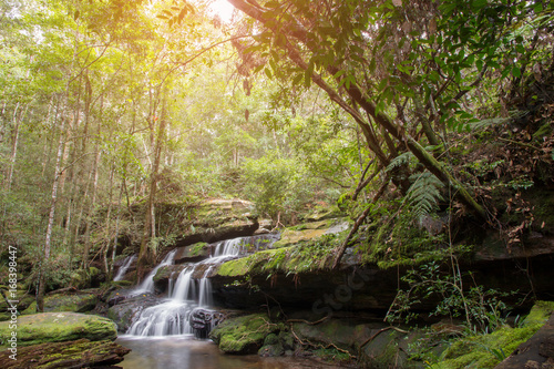 Beautiful waterfall landscape. Waterfall in forest.
