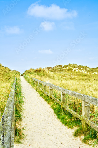 Aluminium Noordzee Weg über die Dünen zum Strand der Nordsee