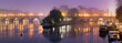 Ile de la Cite at dawn with fog, the Seine River, and Pont Neuf bridge. Winter in Paris, France