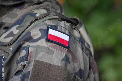 Mundur żołnierski i flaga Poster