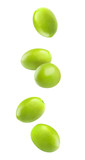 Isolated falling olives. Five green olive fruits in the air isolated on white background with clipping path