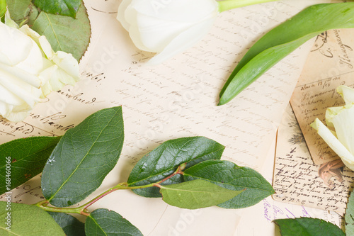 Poster open book with old handwritten letters and fresh flowers and leaves