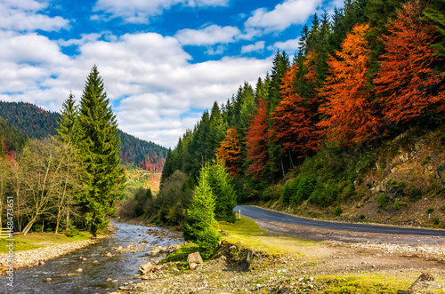 forest river by the road in autumnal countryside