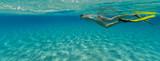 Snorkeling woman exploring beautiful ocean sealife, underwater photography. - 168495486