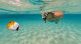 Snorkeling woman exploring beautiful ocean sealife, underwater photography. - 168495496