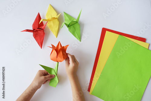 Children's hands do origami from colored paper on white background. lesson of origami © Anastasiia