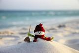 Snowman - 168521642