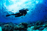 Scuba diver on coral reef - 168542867