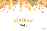 Watercolor autumn sale banner of leaves and branches isolated on white background. - 168581863