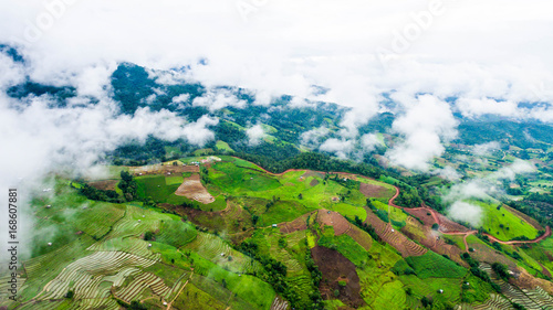 Fotobehang Rijstvelden top view rice fields on terraced , rice plantations , Chiangmai province , North of thailand