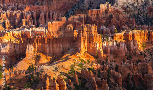 Fotobehang Natuur Park Scenery in Bryce Canyon National Park, under warm sunrise light