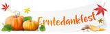 Erntedankfest Banner mit Kürbissen und Laub - 168610243