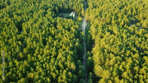 Poster Aerial shot taken with drone of small farmland deep in green evergreen woods with rural road running near in sunlight.