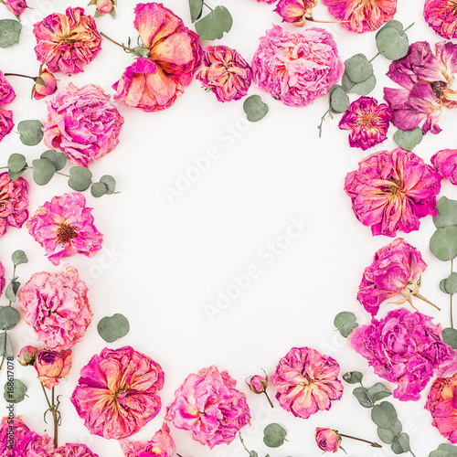 Fototapeta Floral round frame with pink roses and eucalyptus isolated on white background, Flat lay, Top view