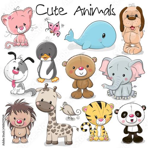 Set of Cute Animals - 168629264