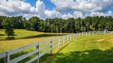 A large tree shades the front area of a white fence. There is a pasture, pond and trees in the background. Clouds and blue sky are in the background. - 168630636