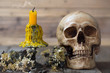 skull and candle with candlestick with dried flowers on brown wooden plate for Halloween day