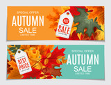 Abstract Vector Illustration Autumn Sale Background with Falling - 168667009