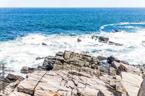 Cliff rocks by trail in Fort Williams park in Cape, Elizabeth Maine during summe Poster
