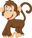 Cartoon smiling monkey isolated on white background - 168701084