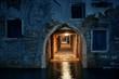 Venice Hallway night