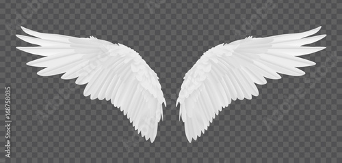 Vector realistic angel wings isolated on transparent background - 168758035